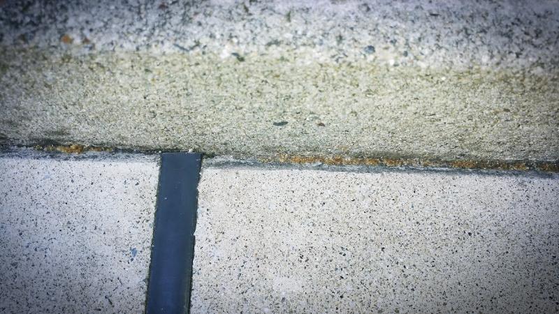 コケとーるスプレーで庭の苔掃除 効果 -1-