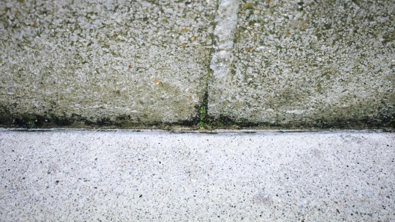 コケとーるスプレーで庭の苔掃除 -2-