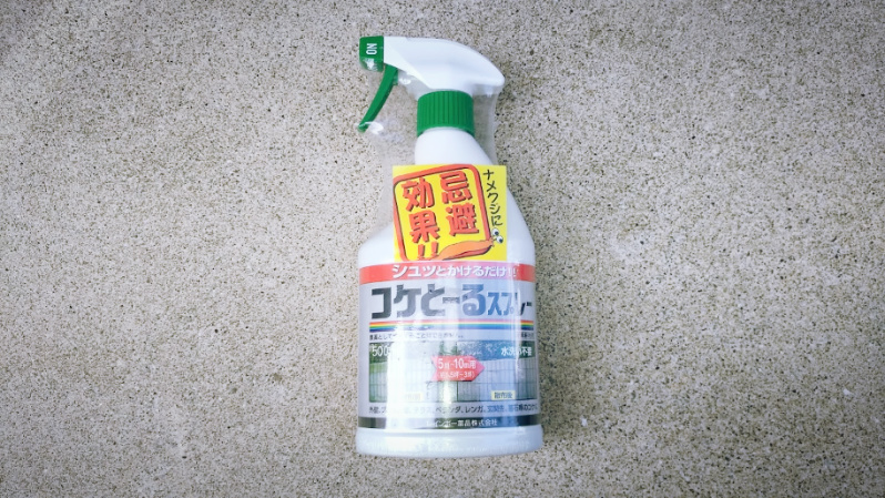コケとーるスプレーで庭の苔掃除 -1-