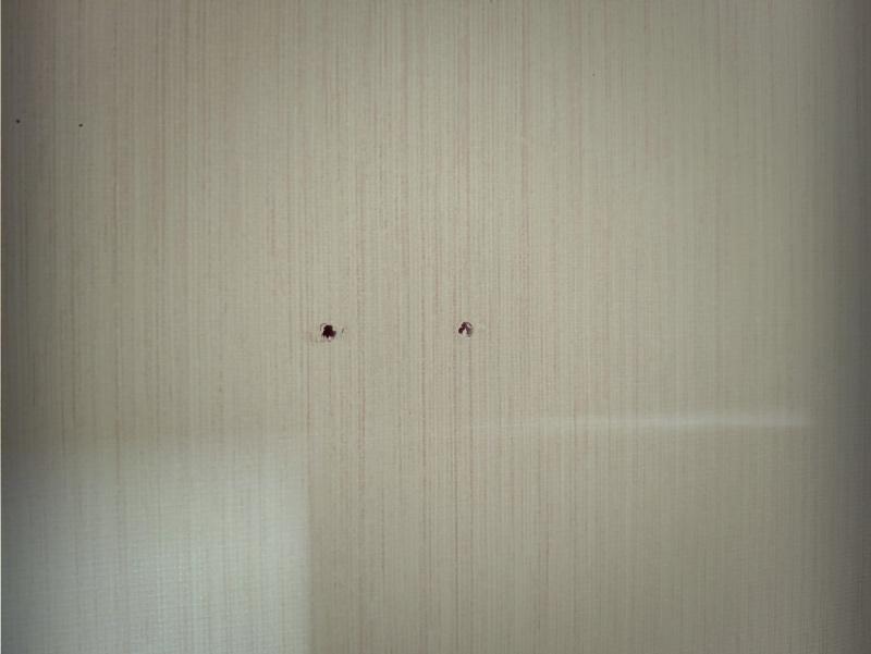 ロイヤル 棚柱&ブラケットで収納棚をDIY -4-