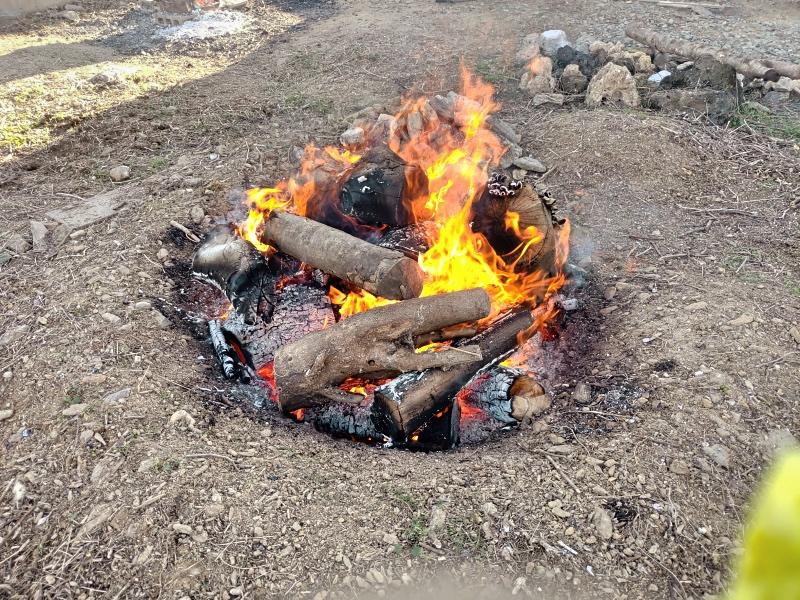採伐 剪定 木材 焼却処分 炭 -9-