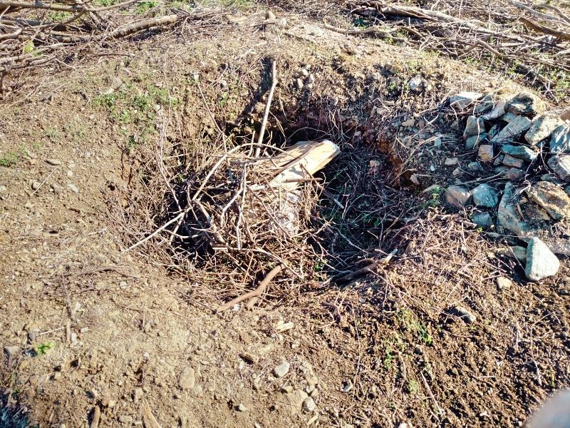 採伐 剪定 木材 焼却処分 炭 -6-