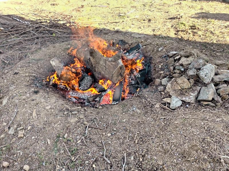 採伐 剪定 木材 焼却処分 炭 -7-