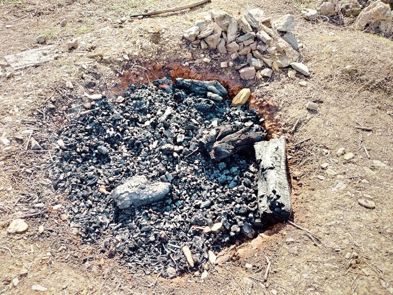 採伐 剪定 木材 焼却処分 炭 -11-