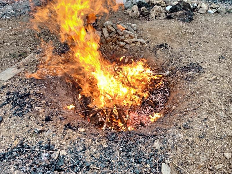 木の焼却処分 -7-
