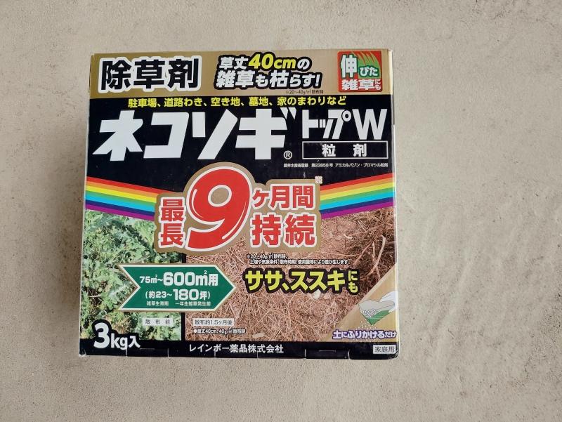 除草剤の効果 2019年6月梅雨時期 -9-