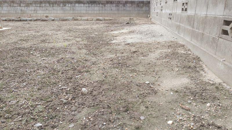 秋の除草剤対策 -3-