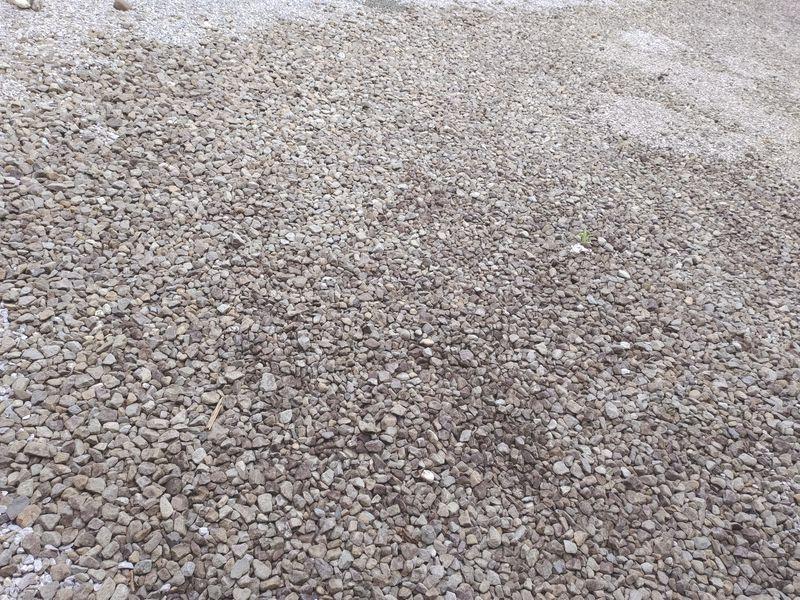 コロナに負けない除草対策 梅雨時期の除草剤の効果 -1-