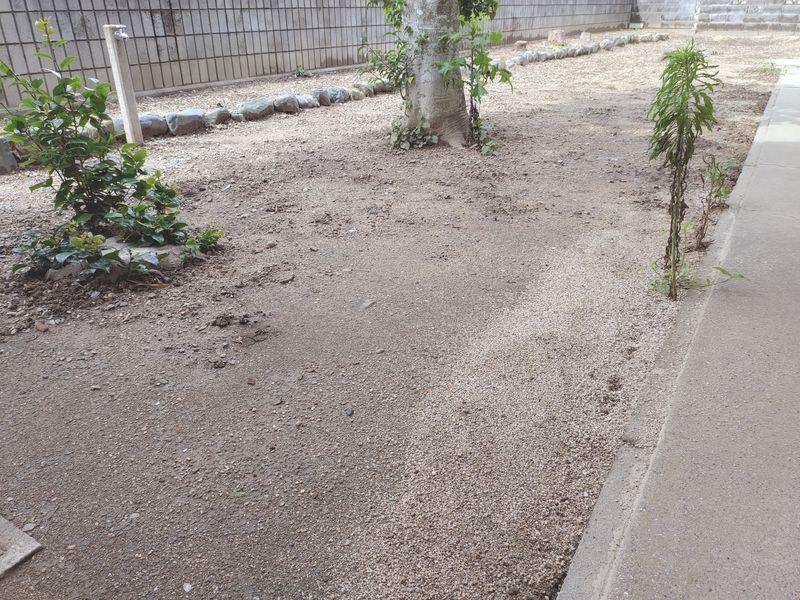 コロナに負けない除草対策 梅雨時期の除草剤の効果 -3-